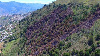 Evaluación y medición de incendio en cobertura vegetal – Carpinelo – Corregimiento de Santa Elena
